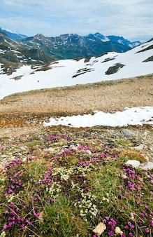 グロースグロックナーハイアルパインロードからのアルプス山脈の眺め