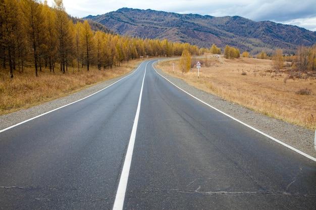 Altai autumn. chui road