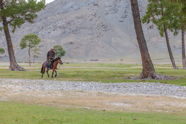 Altai, mongolia - june 14, 2017: a tired nomad shepherd rides a horse home. mongolian altai