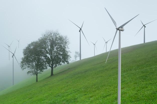 風力発電による代替エネルギーの創出