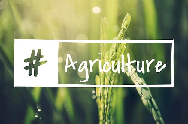 代替農業持続可能な自然の概念