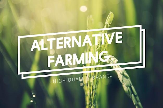 Concetto di natura sostenibile di agricoltura alternativa