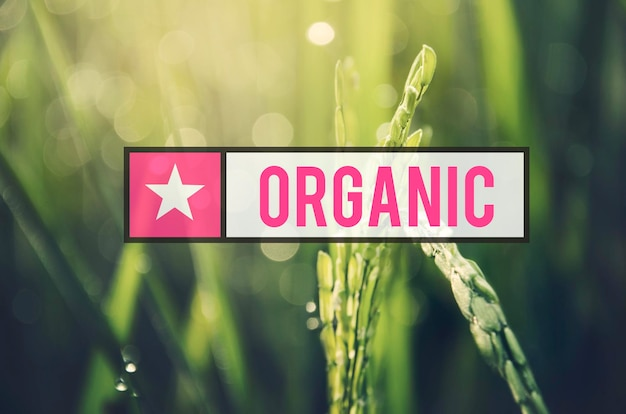 Alternative farming sustainable nature concept