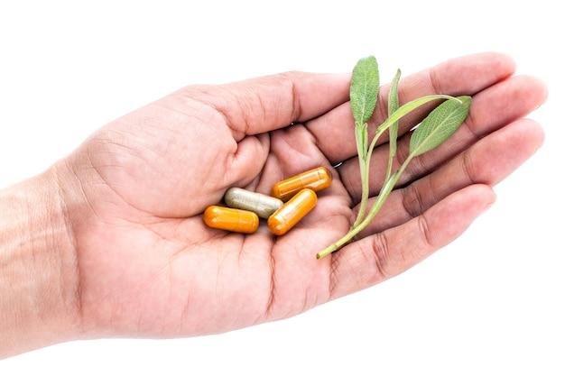 Alternative health care and herbal medicine .