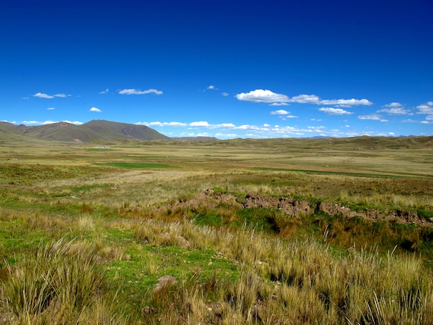 Altiplano in andes, peru, south america