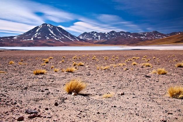 Лагуна альтиплано мисканти рядом с серро мисканти, пустыня атакама, чили
