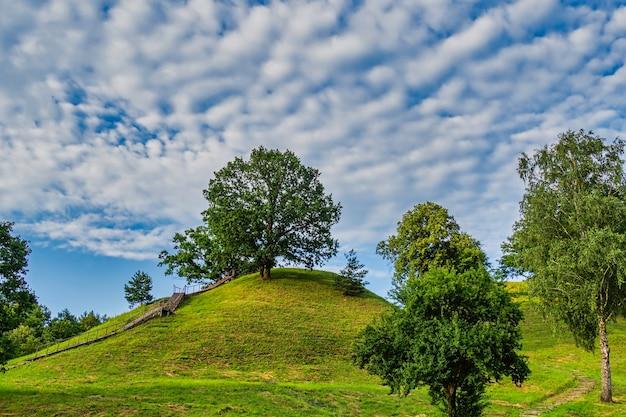 Alytus castle mound, 마운드 정상으로 가는 나무 계단