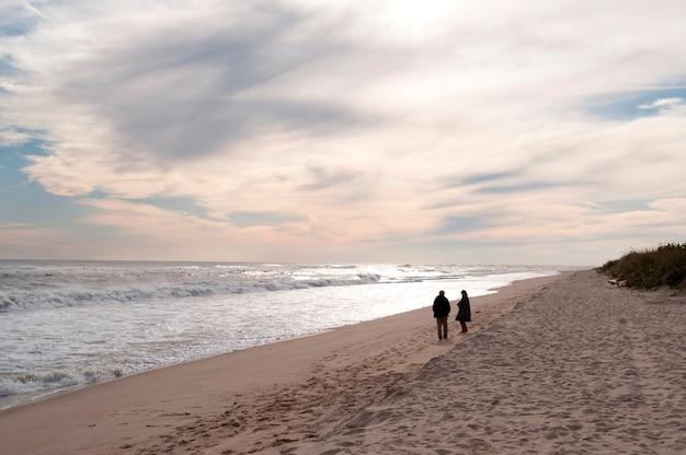 Amagansett beach, the hamptons, new york