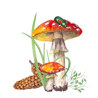 Amanita mushrooms with green beetle. watercolor illustration.