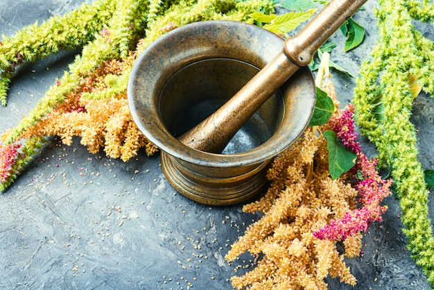 Amaranth and herbal medicine