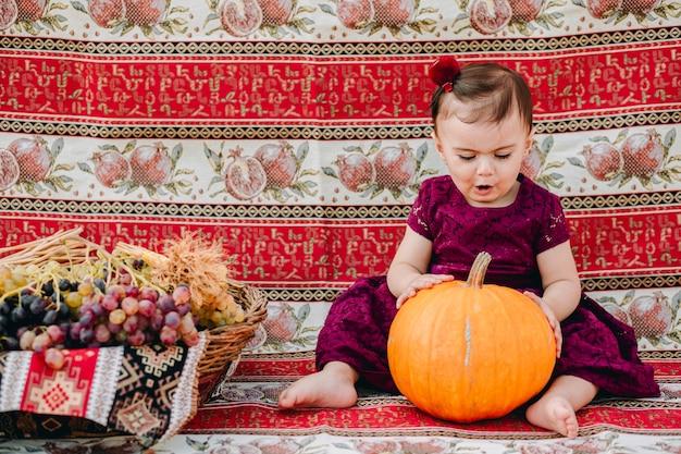 カラフルな背景の前に座って大きなカボチャに触れて驚いたアルメニアの女の赤ちゃん