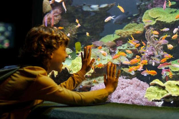 海洋水族館で魚を見て驚いた少年