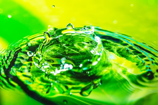 Amazing abstract shot of water drop splash on the green leaf in water.