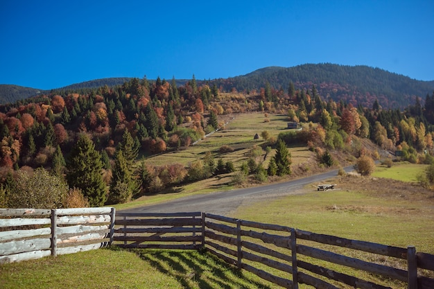 Удивительный осенний пейзаж в горах с лугом и красочными деревьями на фоне. осенний вид с деревянным забором на переднем плане. национальный природный парк синевир, карпаты, украина.