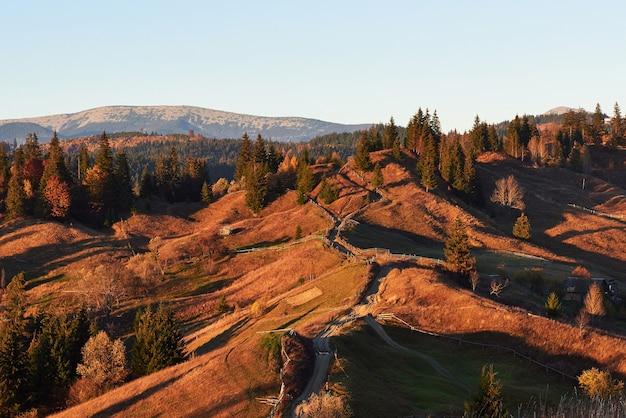 前景に牧草地と色とりどりの木々があり、足元に霧がある山々の素晴らしい秋の朝の風景。