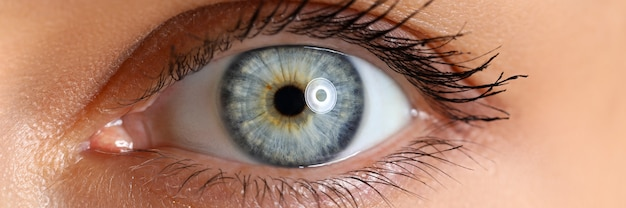 Amazing female blue and green colored wide opened eye close-up