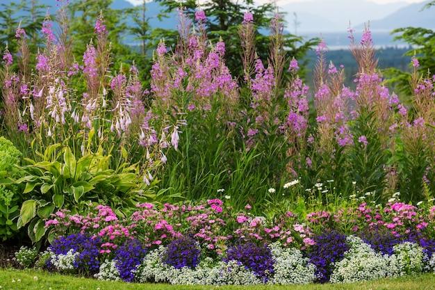 Amazing fresh flowers in summer garden