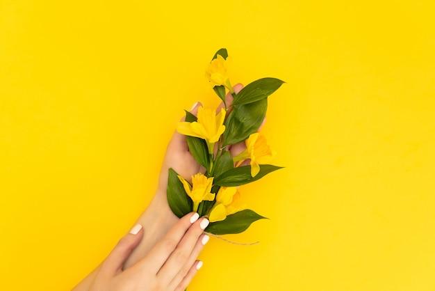 Удивительный фон гранж с желтыми цветами нарциссов на бирюзовой текстурой.