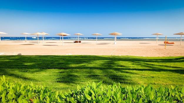 長い砂浜のビーチの隣にある美しい芝生の素晴らしい風景