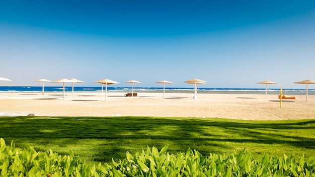 긴 모래 바다 해변 옆에 아름다운 잔디밭의 놀라운 풍경