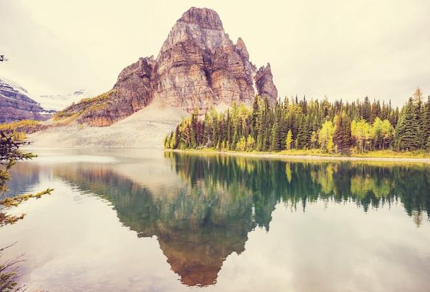 Удивительные горные пейзажи в провинциальном парке маунт-ассинибойн, британская колумбия, канада. осенний сезон.