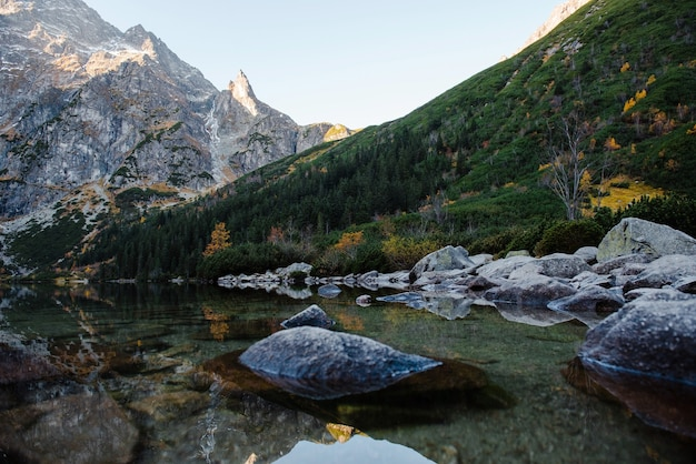 山の素晴らしい自然の風景