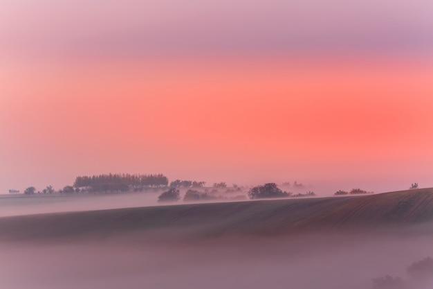 朝の霧の日の出の素晴らしい自然の風景。チェコ共和国の南モラビアの秋の風光明媚な風景