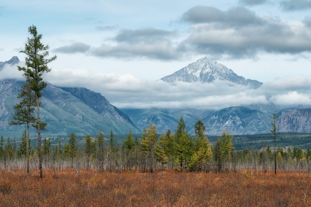 Amazing perspective of caucasian snow mountain or volcano elbrus