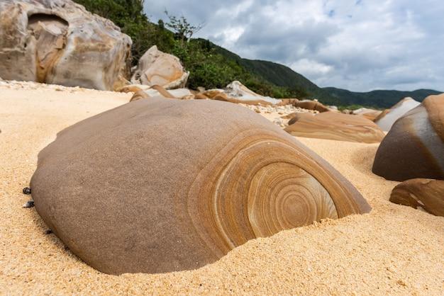해변 모래로 둘러싸인 표면에 원형 패턴이 있는 놀라운 바위 이리오모테 섬