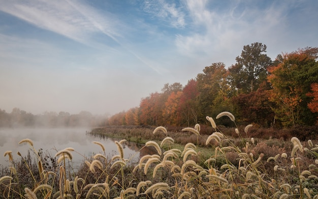 Amazing shot of an autumnal landscape with a lake