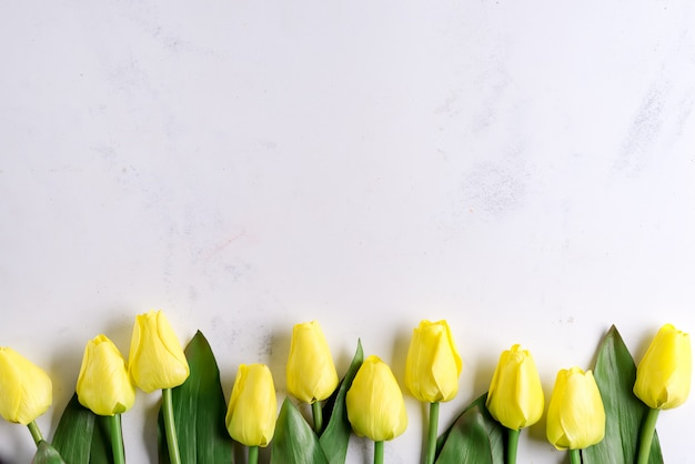 Amazing spring yellow tulip flowers on stone background, flat lay with copy space