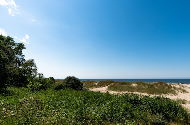 Amazing summer view of the baltic sea coast, sandy trail and blue sea