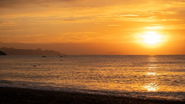 Amazing sunrise over the tropical beach. yellow sun over sea. orange colors waves. nature background. beautiful serene scene. morning. sunlight reflect on water surface