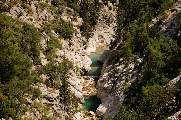 Удивительный вид сверху ликийского пути с лазурной рекой и зелеными деревьями