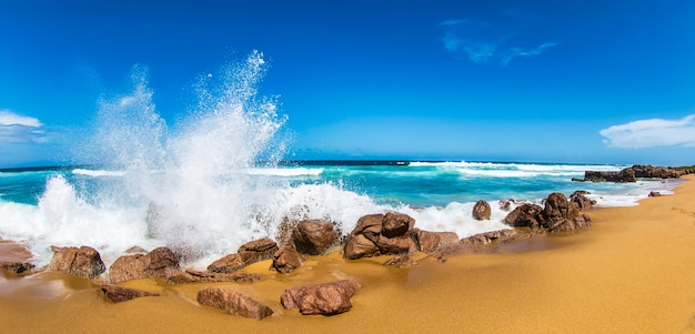 Amazing tropical backgrounds in paradise island beaches of south africa. an ocean wave breaks on rocky coastline. holidays in south africa coast of rsa