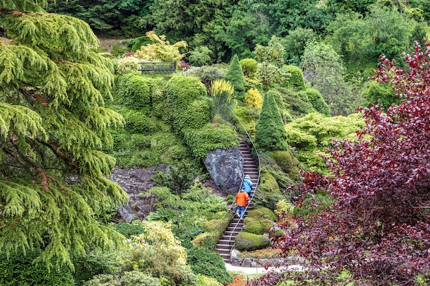 Amazing view of butchart gardens in summer victoria british columbia canada  tourists climbing the stairs up the the hill travel canada