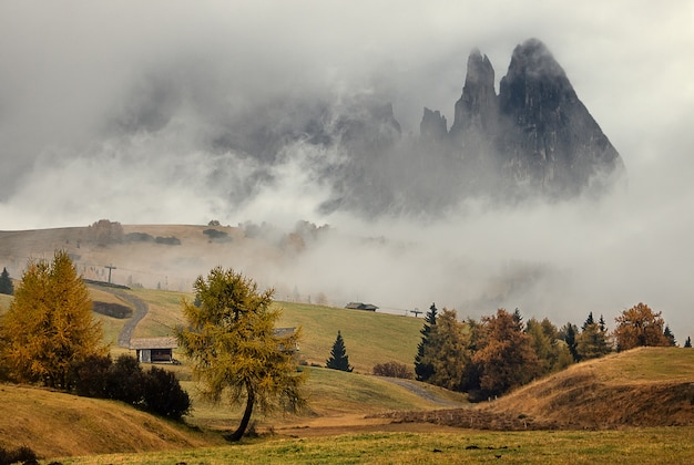 Amazing view at the fog morning in alpe di siusi italian dolomites, south tyrol