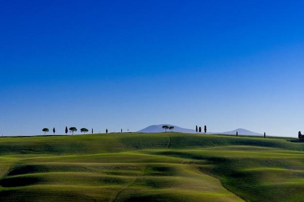 イタリア、トスカーナにある最後にいくつかの木がある緑の野原の素晴らしい景色