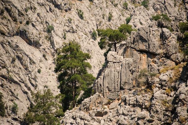 Удивительный вид на высокую скалу древнего ликийского пути