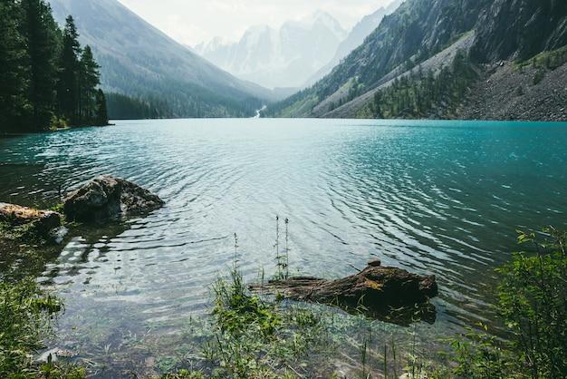 山の湖の紺碧の澄んだ穏やかな水に瞑想的な波紋の素晴らしい景色