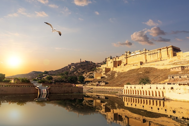 Amber fort at sunset, beautiful view in jaipur, india.