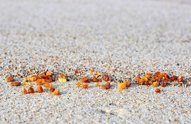 Янтарь в песке. янтарь на берегу моря. солнечный камень