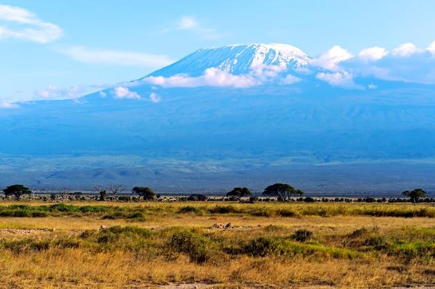 ケニアのアンボセリ国立公園とキリマンジャロ山