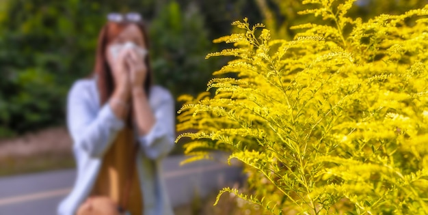 백그라운드에서 ambrosia 부시 여자는 냅킨에 그녀의 코를 불면. 식물 개념에 대한 계절 알레르기 반응