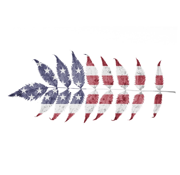 葉の上のアメリカの旗は白い背景で隔離されます