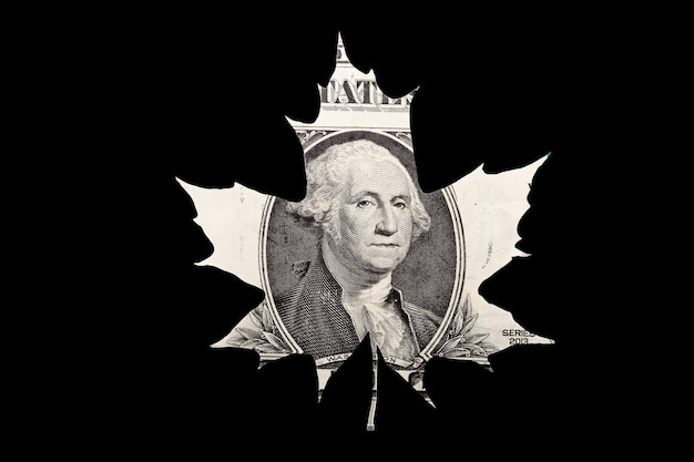 American dollar leaf shape isolated on black background