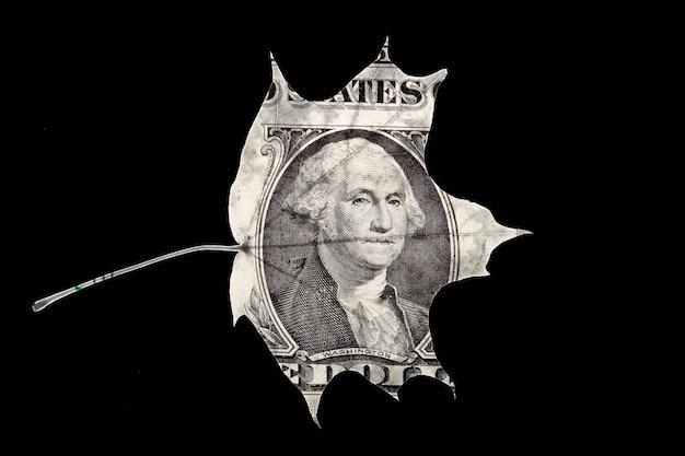 검은 배경에 고립 된 미국 달러 잎 모양