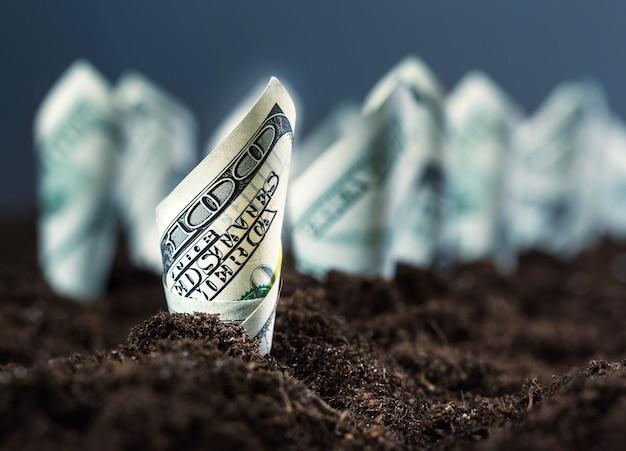 Американские доллары растут из-под земли