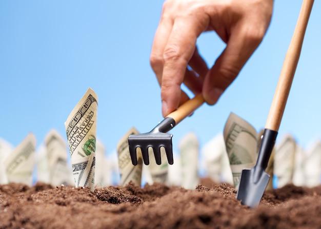 米ドルは地面から成長します