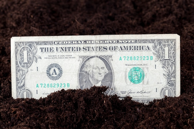Американские доллары в почве сельскохозяйственного поля